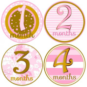 Mumsy Goose- Baby Girl Monthly Age Stickers- 1-12 Months