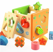 Vidatoy 10 Hole Cube for Shape Shorting and Maths Learning Wooden Toys