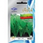 Leaf Mustard (4400 Seeds) Seeds - 1 Package From Chai Tai, Thailand