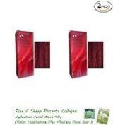 2 Packs of Berina Hair Professional Permanent Hair Colour Cream (A 9) Garnet Red Colour