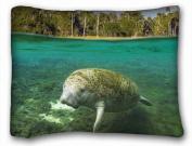 Custom Decoration Standard Size PillowCase - Animals sea water manatee 50cm *70cm One Side