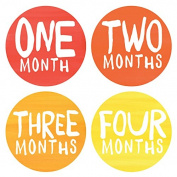 Lucy Darling Baby Monthly Stickers - Gender Neutral - Rainbow Spectrum - Months 1-12