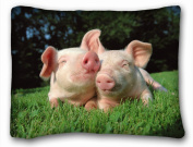 Decorative Standard Pillow Case Animals funny weasel s pig pair grass lie 50cm *70cm One Side