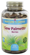 Nature's Herbs Saw Palmetto Berries -- 250 Capsules