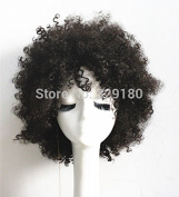 Capless Beautiful Short Afro-curly Hairstyle Black Women Wig Synthetic Afro-curly Celebrity Synthetic Wigs