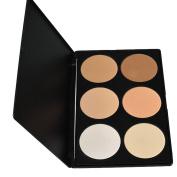 Lowestbest Palette 6 Colours Makeup Contour Face Eye Powder Foundation