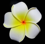 6 Pieces White Foam Plumeria Flower Hair Clip Accessory for Hawaiian Bridal Wedding Party Decorate