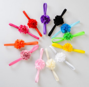 Lace Kenzola 12pcs Classic Solid Colourful Hairbands Hairties Hair Ties Set