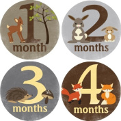 Rocket Bug Monthly Growth Stickers, Forest Critters