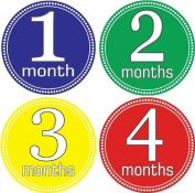 Rocket Bug Monthly Growth Stickers, Simply Striking Baby