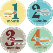 Rocket Bug Monthly Growth Stickers, Turtle Time Baby