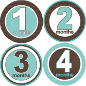 Rocket Bug Monthly Growth Stickers, Ziggy Baby