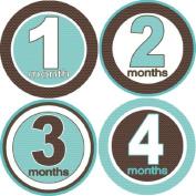 Rocket Bug Monthly Growth Stickers, Ziggy Baby