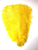 Ostrich Feathers 46cm - 50cm . Pack of 6 Feathers (Yellow Gold) Ship From New York