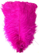 Ostrich Feathers 46cm - 50cm . Pack of 6 Feathers (Magenta) Ship From New York