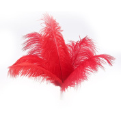 50pcs New Style Real Natural 10-12 Inch(25-30cm) Ostrich Feathers