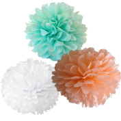 CheckMineOut 12pcs Mixed White Peach Mint Tissue Paper Pom Poms Flowers Wedding Birthday Anniversary Party Christmas Room Decoration