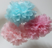 SUNBEAUTY 15cm/20cm 6pcs Mixed Sizes Pink Baby Pink Sky Blue Mixed Colour Tissue Paper Pom Poms Flower Balls Hanging Decoration Party Birthday Wedding