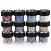 Polyester Metallic Mixed Glitter 12 Piece Kit - Includes Solvent Resistant Dust, Powder, Hexagon, Holographic, Glitters - Great for Nail Art Polish, Gels, Art and Crafts, Paints and Acrylics Supplies -