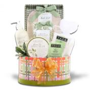 Lauren Nichole Green Tea Mothers Day Spa Gift Basket