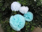Saitec ® 12PCS Mixed Sizes White Aqua Blue Tissue Paper Pom Poms Wedding Garland Pompoms Flower Balls Wedding Pom Poms for Birthday Party Baby Room Decoration