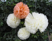 Saitec ® 12PCS Mixed Sizes Peach Ivory Tissue Paper Flower Pom Poms Pompoms Tissue Paper Flowers pom poms balls lanterns Party Decor Wedding Birthday Party Nursery Decoration