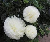 Saitec ® 12PCS Mixed Sizes Cream Ivory Tissue Paper Flower Pom Poms Pompoms Tissue Paper Flowers pom poms balls lanterns Party Decor Wedding Birthday Party Nursery Decoration