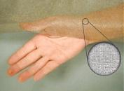 Silver Shielding Mesh Fabric | High Performance RF Shielding