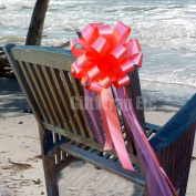Coral Wedding Pull Bows with Tulle Tails - 20cm Wide, Set of 6