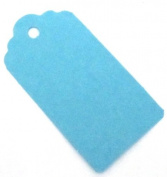 20 Aqua / Light Blue Medium Gift Tags / Wedding Tags / Hang Tags / Favour Tag - 67mm x 35mm