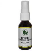 California Xtracts, Breath Refresh Spray, Alcohol Free, 1 fl oz