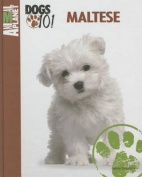 Maltese (Animal Planet