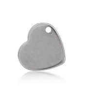Valyria 50pcs Handle Polished Silver Tone Stainless Steel Stamping Blanks Tags Heart Pendant 11mm x 10mm