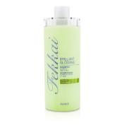 Brilliant Glossing Shampoo (Shines & Smoothes), 473ml/16oz