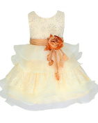 Lace & Organza Occasion Baby Girl Infant Pageant Christening Dress 3 to 24 Months