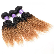 Ombre 1b/27 Deep Curly Hair Extensions 16