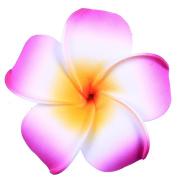 Anleolife 6pcs/lot Pretty Hawaiian Plumeria Flower Foam Hair Clip