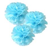 CheckMineOut 10pcs Blue Tissue Paper Pom Poms Flowers Wedding Favours Birthday Party Baby Shower Party Outdoor Decoration