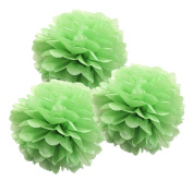 CheckMineOut 10pcs Green Tissue Paper Pom Poms Flowers Wedding Centrepieces Birthday Party Baby Room Nursery Decoration