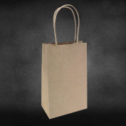 "13cm x 8.3cm x 8"" - 25 Pcs - Brown Kraft Paper Bags, Shopping, Mechandise, Party, Gift Bags"