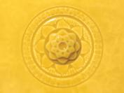 Amaco Celadon Hi Fire (Cone5-6) Glaze - Pint # C-60 - Marigold