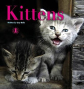 Kittens (The Literacy Tower)