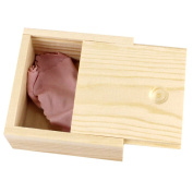 Mini Finished Wood Treasure Chest Boxes for Weddings, Crafts & More, 3L*3W*2H Inch