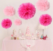 HoHoDeal 12pcs Mixed Sizes Pink & Hot Pink Party Tissue Paper Pom Poms Bridal Shower Party Wedding Baby Room Fluffy Decoration