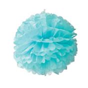 Saitec ® 12PCS Mixed Sizes Aqua BlueTissue Paper Flower Pom Poms Pompoms Wedding Birthday Party Nursery Decoration