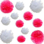 Saitec ® 12pcs Mixed 3 Sizes White hot Pink Tissue Paper Pom Poms Flower Wedding Party Baby Girl Room Nursery Decoration