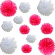 Saitec ® 12pcs Mixed 3 Sizes White hot Pink Tissue Paper Pom Poms Flower Wedding Party Baby Girl Room Nursery Decoration