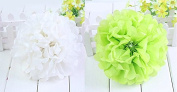 Worldoor® New Coming 12PCS Mixed Sizes White Lime Green Tissue Paper Flower Pom Poms Pompoms Wedding Birthday Party Nursery Decoration