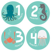 Lucy Darling Baby Monthly Stickers - Gender Neutral - Snorkelling Adventure - Months 1-12