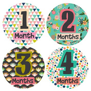 Little Lady Monthly Stickers - Baby Girl - Months 1-12